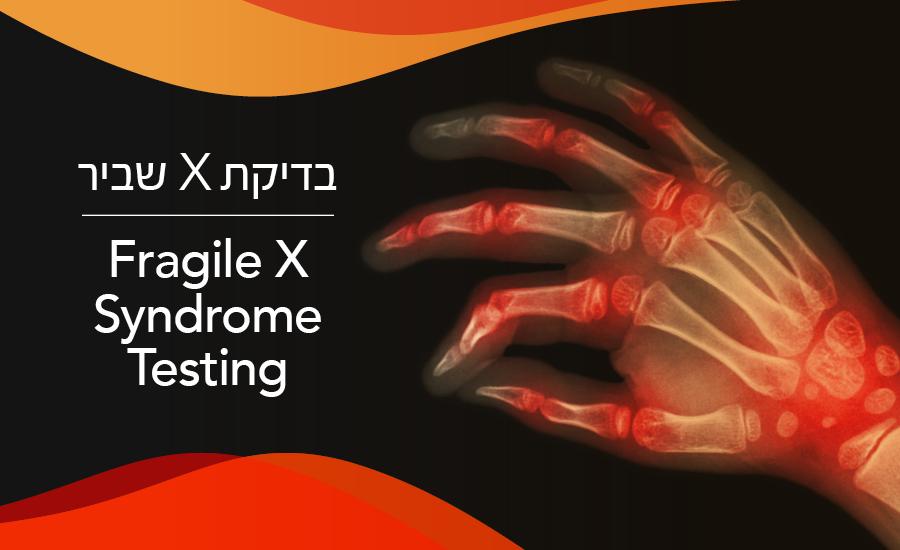 בדיקת X שביר