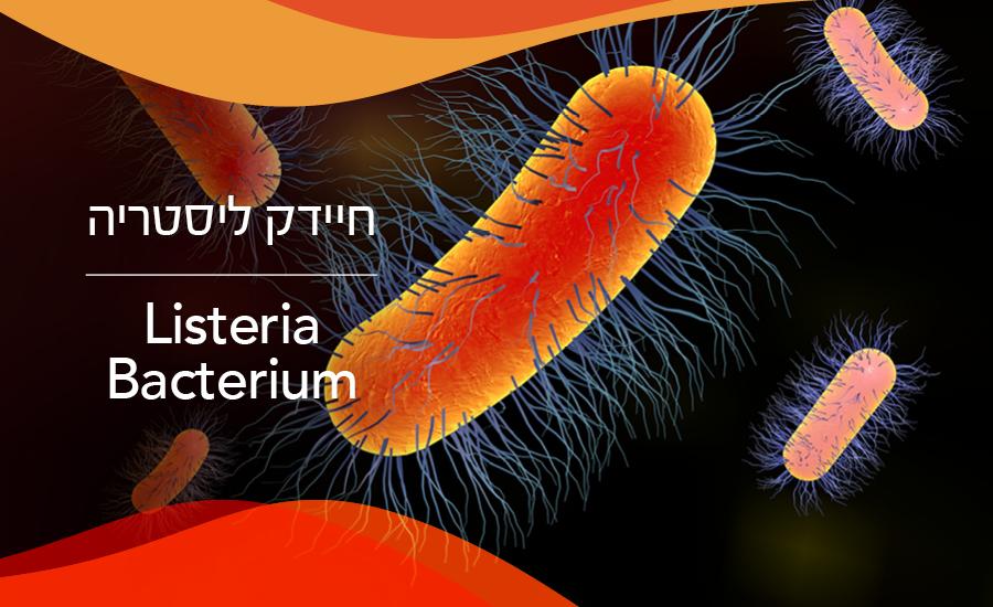 חיידק ליסטריה - כל מה שצריך וחייב לדעת